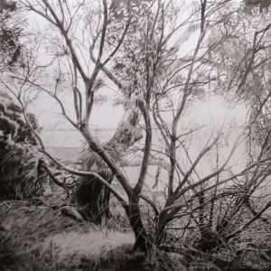 Group exhibition: Works on Paper